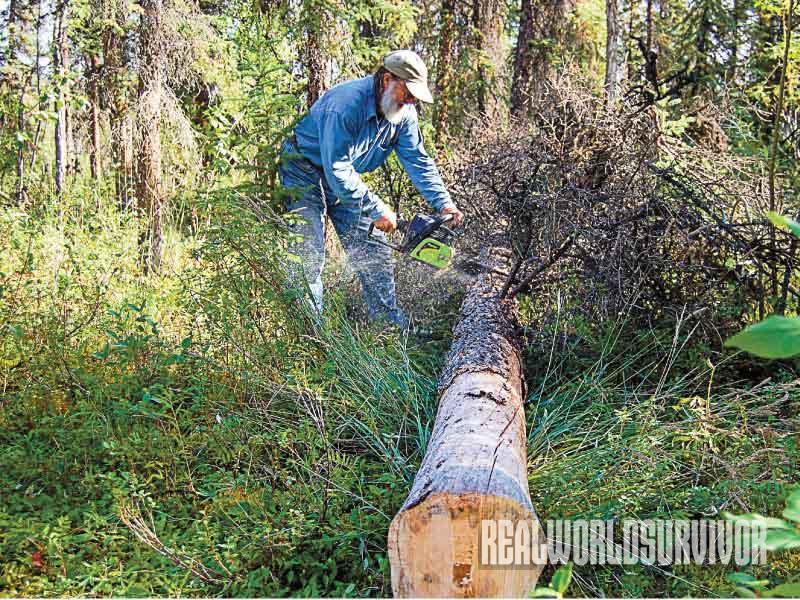 Building a Log Cabin Process, Log Cabin, chainsaw