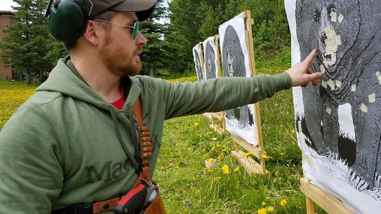 Bear Defense, target, bears, training