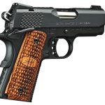 Concept Guns, Gun Reboots, Kimber Ultra Raptor pistol, .40 S&W