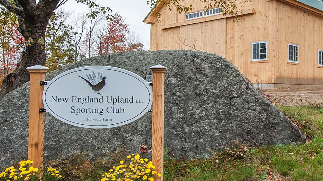 Predator Hunting New England Upland Shooting Preserve