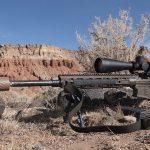 Bolt Rifle vs Semi-Auto Rifle, AR rifle