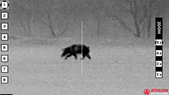 Wild Pig Hunt, Night hunting, beast master hunting