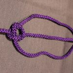 Rope Knots, Bowline Knot Step 5