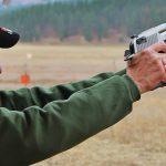 Magnum Research 429 Desert Eagle Cartridge, pistol cartridge, 44 Magnum, recoil
