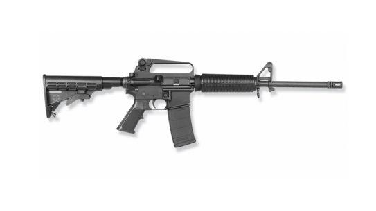 Bushmaster XM15-E2S, Connecticut Supreme Court, Sandy Hook Massacre