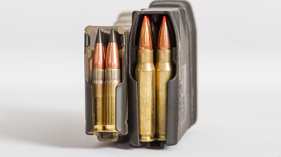 Differences Between the Pair, rifles