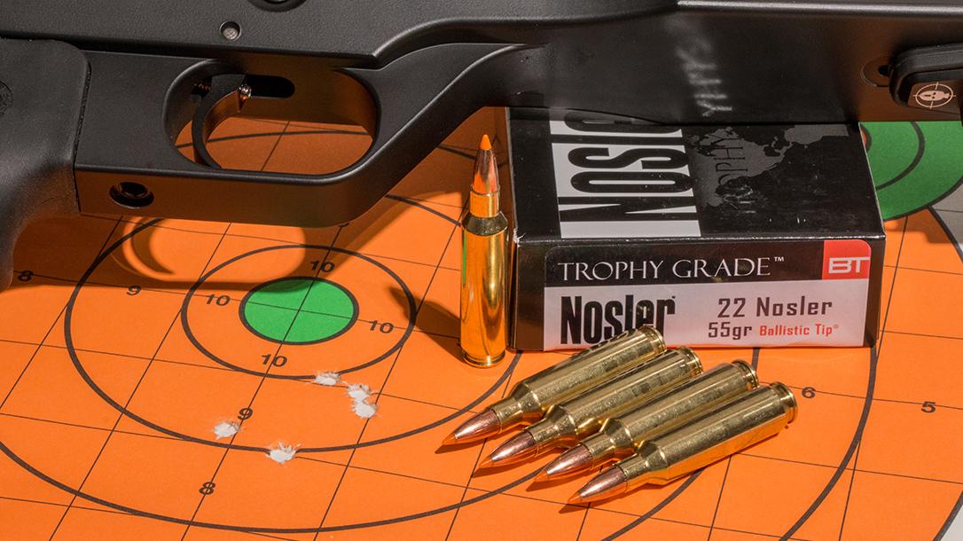.22 Ammo, hunting, single-shot pistol
