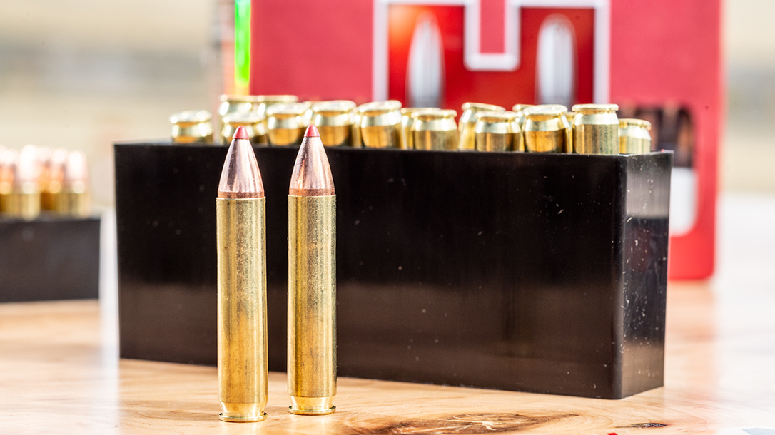 350 Legend Cartridge, Hornady Whitetail Ammo, hunting ammo