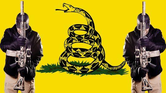 Gadsden Flag, Racist, Racism