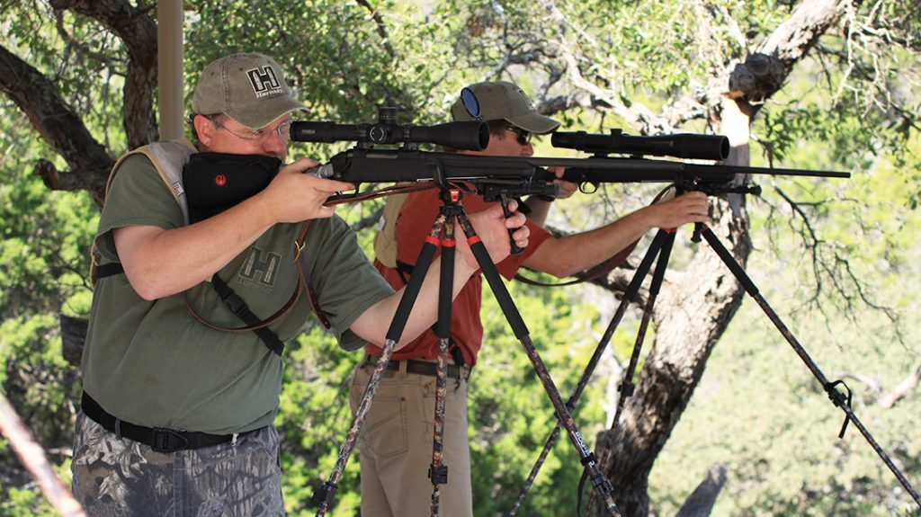 Ruger American Rifle 308, review, testing