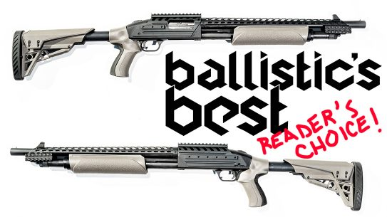 Ballistic's Best 2020 Reader's Choice Awards, reup