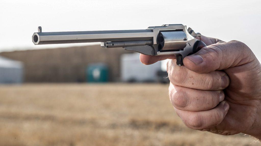 NAA Earl Hogleg mini revolver, 22 Magnum, review, testing