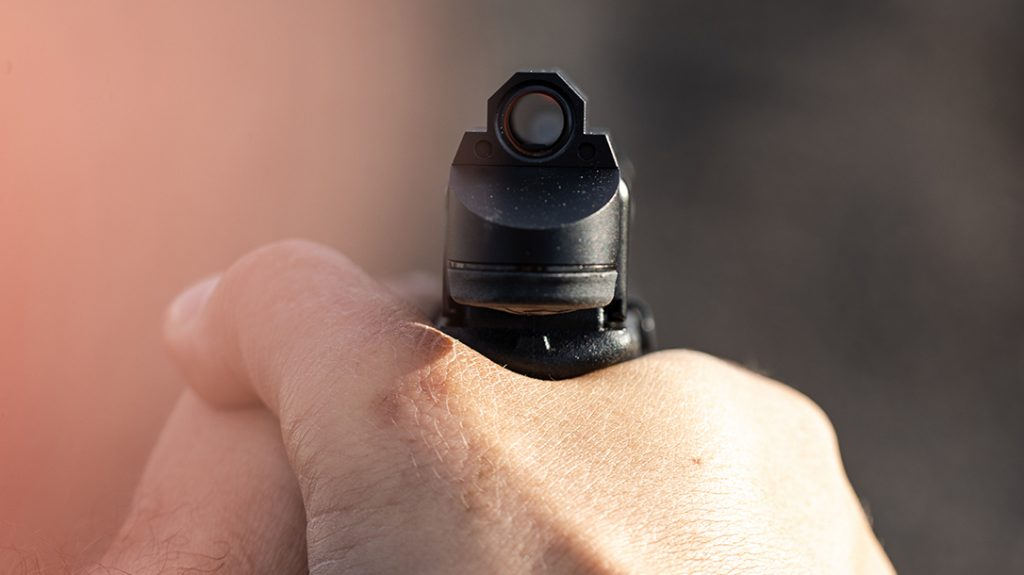 Leupold DeltaPoint Micro red dot sight review, tube
