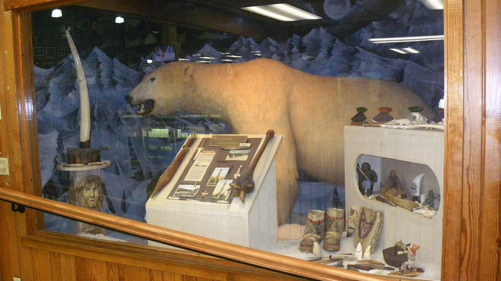 A display case holding a stuffed Polar Bear and Inuit and Inupiaq artifacts.